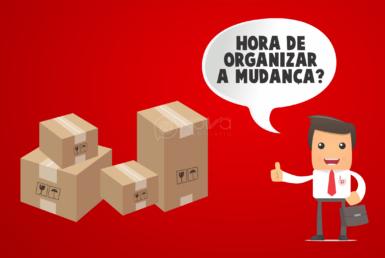 como fazer mudança organizada